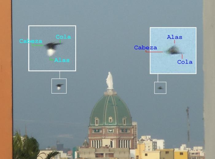 https://realidadovniargentina.files.wordpress.com/2012/07/analisis.jpg?w=700